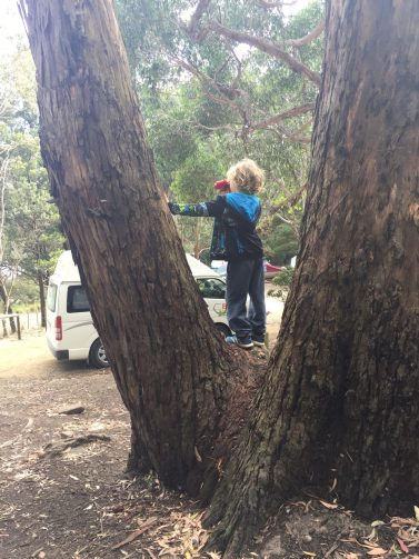 Playing at campsite