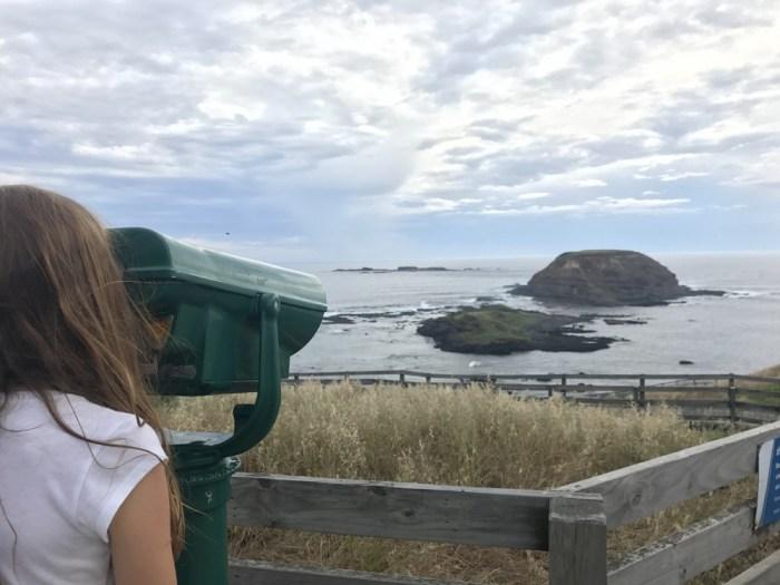 Nobbies Phillip Island