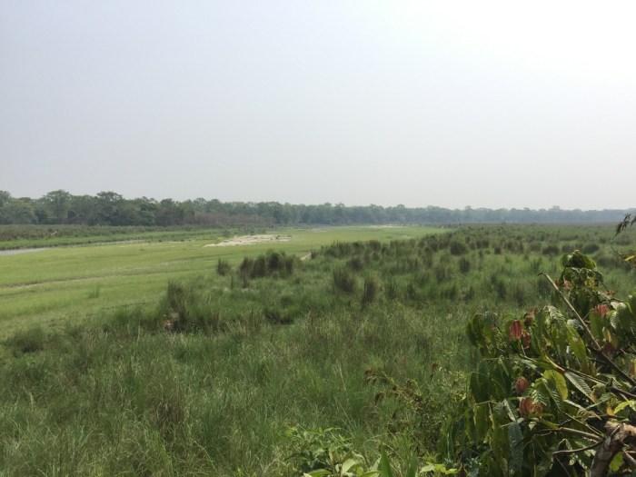 Royal Chitwan