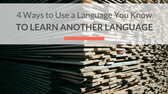 learn multiple languages