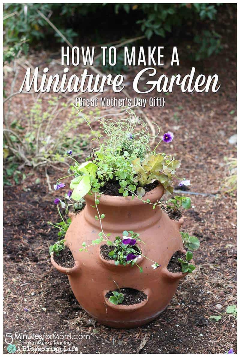 How To Make An Edible Miniature Garden Diy Mother S Day