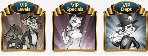 Cool Cat VIP Club