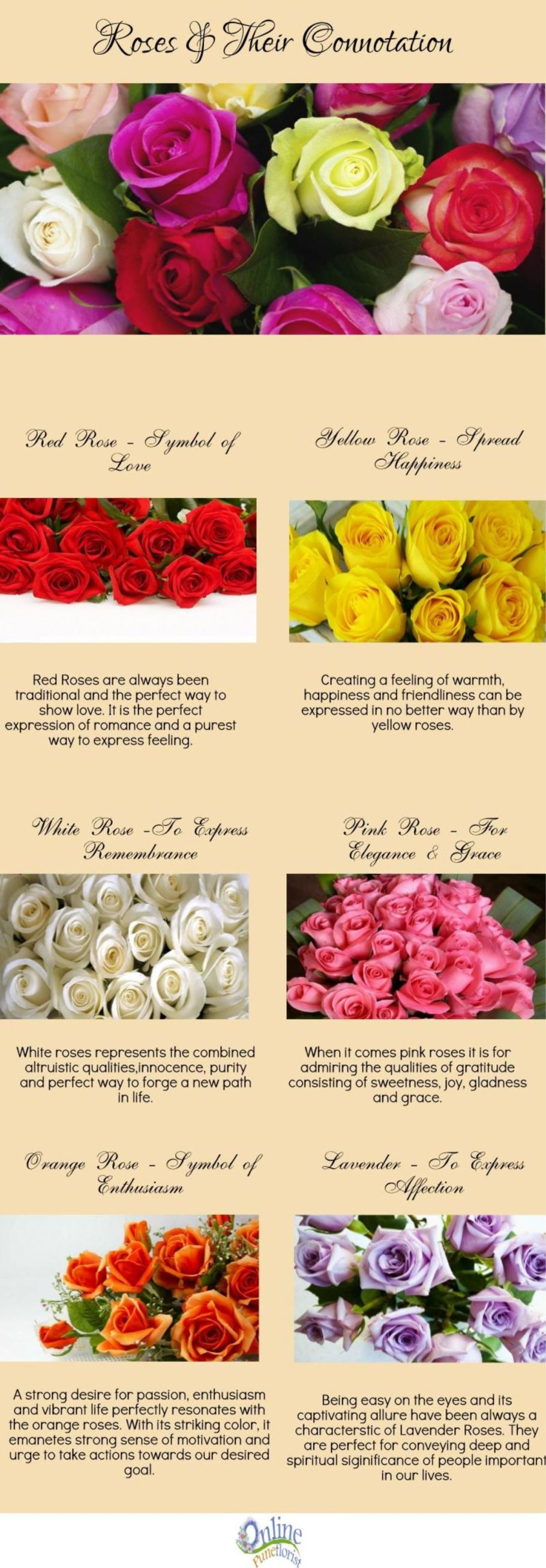 roses and its connotation