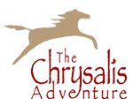 Chrysalis Adventure SM