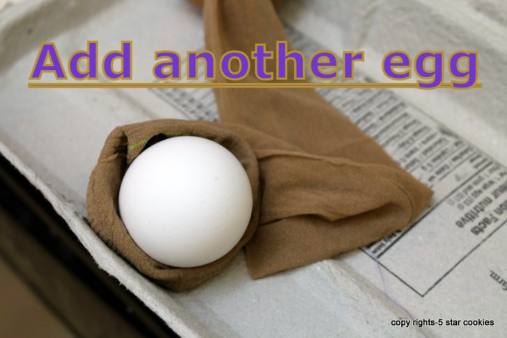 naturally dyed eggs using onion skin 5starcookies food blog Add another egg