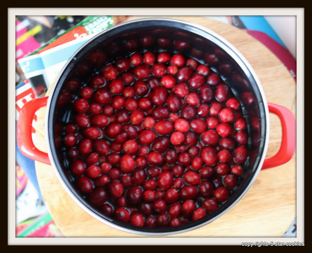 Cranberry Juice from 5starcookies-mix organic cranberries and water