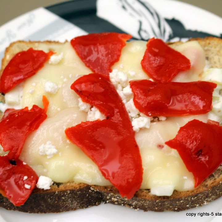 Creamy Cheese Sandwich - Ariel's Sandwich for FAB you