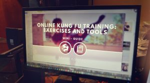 Online learning and martial arts: is it possible?