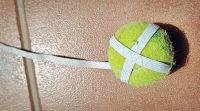 the_pneumatic_ball_training