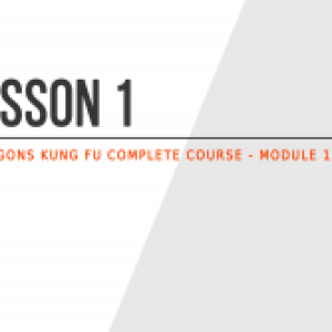 Lesson 1 – What is 6 Dragons Kung Fu?
