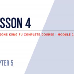 Lesson 4: kicks