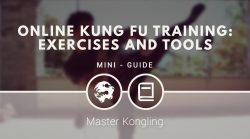 Online Kung Fu training: exercises and tools
