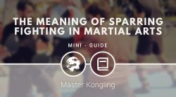 The meaning of sparring fighting in martial arts