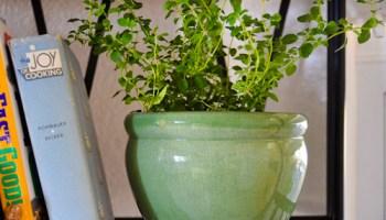 Gourmet Garden Stir-In Herb & Spice Pastes - No Waste