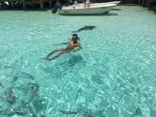 Boiando numa boa e o tubarão nadando lá atrás, Bahamas.