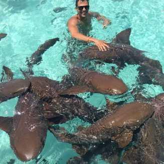 Nadando com tubarões em Exuma, Bahamas.