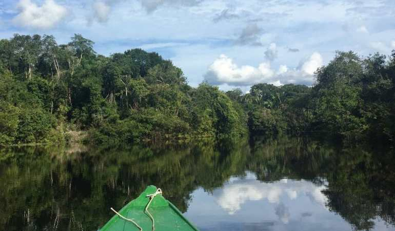 To visit the Amazon is mandatory to take the yell fever vaccine.