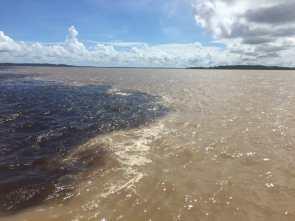 Manaus Riverine communities tour in Manaus
