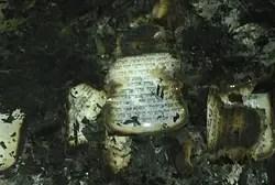 שריפת ספרי קודש