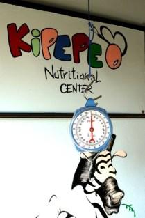 kipepeo8