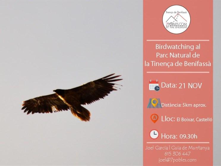 [:ca]Birdwatching a la Tinença de Benifassà[:es]Birdwatching en la Tinença de Benifassà[:]