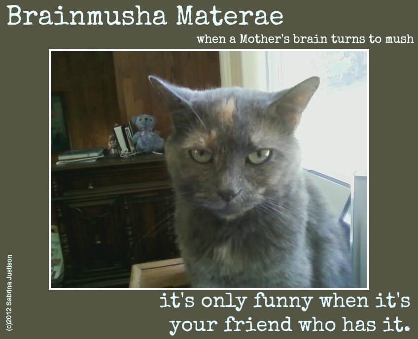 Brainmusha Materae: Moms, Are You Taking Care of YOUR Brain?