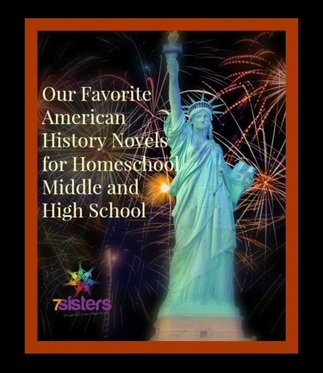 American history books for high school