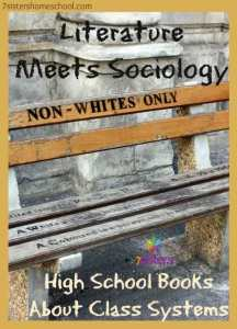 Literature Meets Sociology: high school books about class systems
