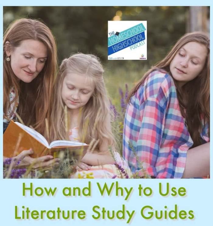 HSHSP Ep 164: How and Why to Use Literature Study Guides. Enrich but don't bore: Literature can be fun and meaningful for the whole family with wise use of Literature Study Guides from 7SistersHomeschool.com #HomeschoolHighSchoolPodcast #HomeschoolLiterature #HomeschoolLanguageArts #LiteratureStudyGuides