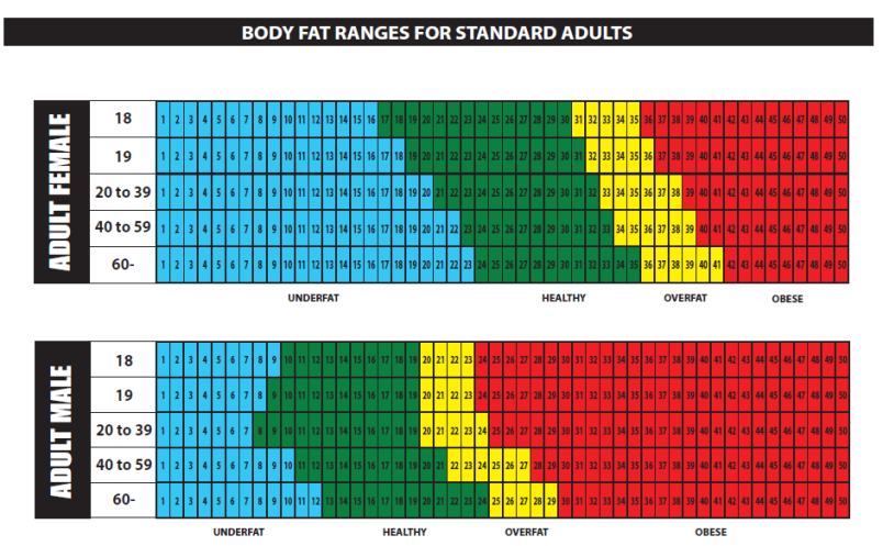 Body Fat Chart Adult