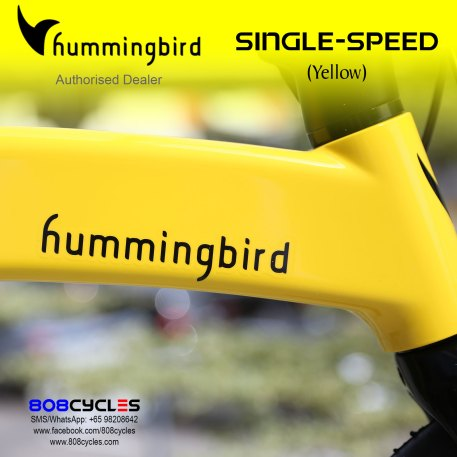 Hummingbird Folding Bike