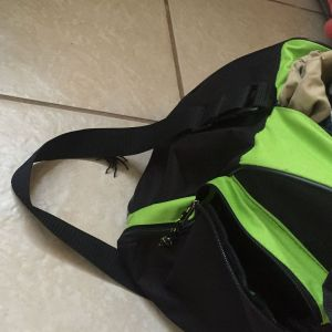 A tarantula climbs out of a duffel bag