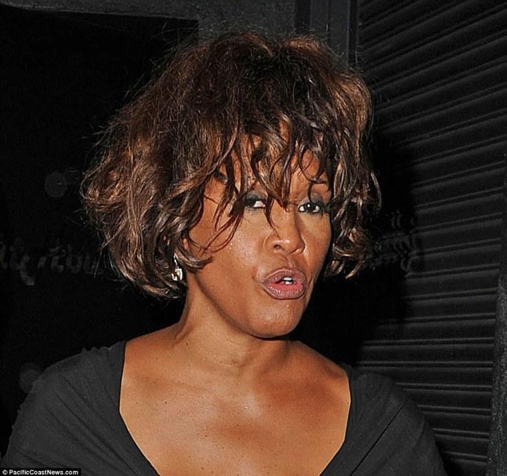 Whitney Houston 2012