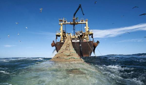 Organizaciones del sector turístico se oponen a la reactivación de la pesca de arrastre en Costa Rica