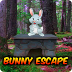 Avm Bunny Escape
