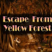 Top10 Escape From Yellow Forest
