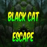 8b Black Cat Escape