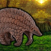 G2R Escape Game Save The Pangolin