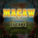 8b Macaw Escape