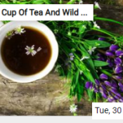 Cup Of Tea And Wild Flowers Jigsaw