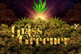 "Salaam Remi Delivers Netflix's ""Grass Is Greener"" Album"