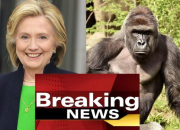 Leaked CIA Documents Indicate Harambe Had Classified Information About The Clinton's Campaign