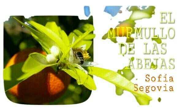 8-sorbos-de-inspiracion-el-murmullo-de-las-abejas-sofia-segovia-libro-opinión-sinopsis-lectura-frases-frases-mi-momento-café