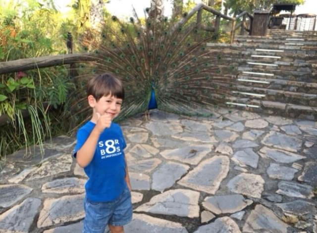 8-sorbos-de-inspiracion-selwo-viaje-con-niños-actividades-que-hacer-con-niños-malaga