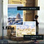 8-sorbos-de-inspiración-valora-aprecia-las-flores-piedras-del-camino