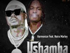 Harmonize Ushamba Remix Mp3 Download.