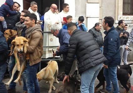 La benedizione degli animali in piazza Vittorio Veneto