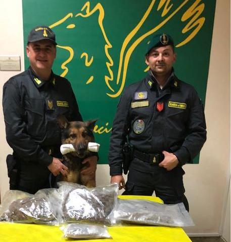 CATANIA: 1,8 kg marijuana in auto, Gdf lo arresta