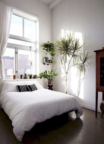 Lovely Couple Apartment Decorating Ideas15