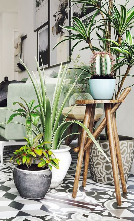 Astonishing Succulent Decoration Ideas For Living Room 46